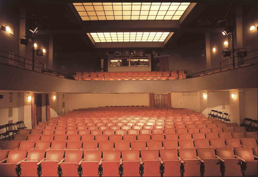 12-theatre-auditorium_